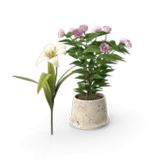 Peyzaj ve Çiçekçilik